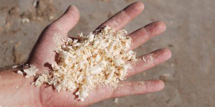 Prevenzione per l'esposizione alle polveri di legno